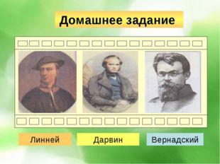 Домашнее задание Мистер X Мистер Y Мистер Z Линней Дарвин Вернадский