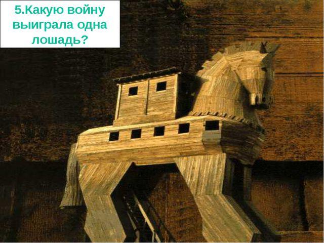 5.Какую войну выиграла одна лошадь?