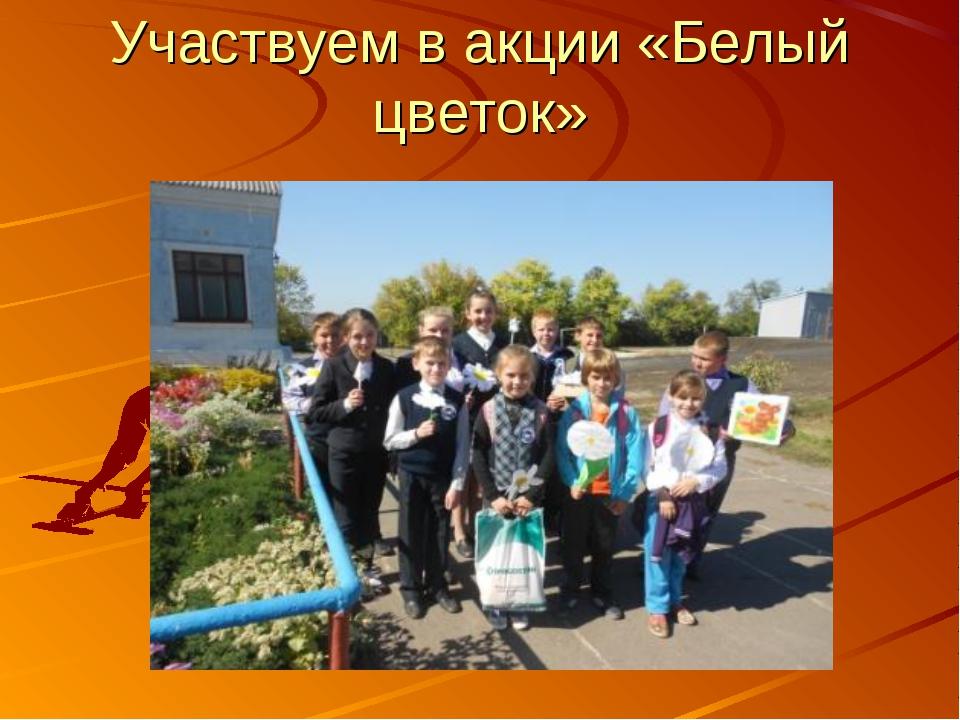 Участвуем в акции «Белый цветок»