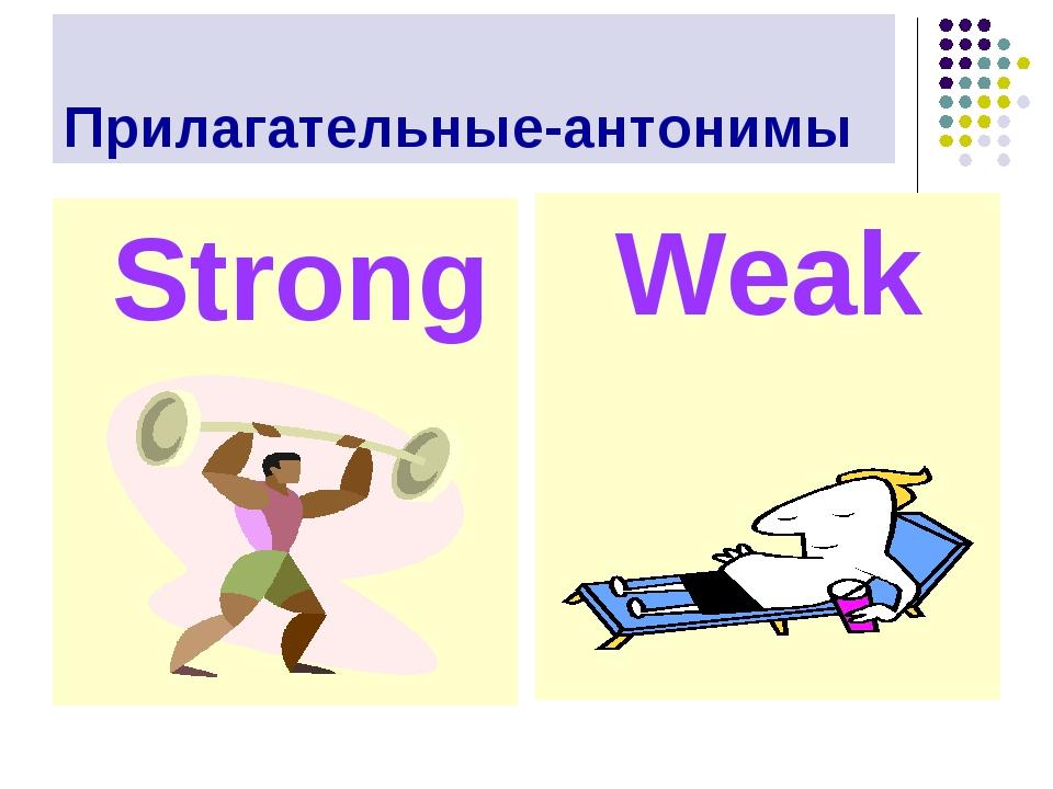 Прилагательные-антонимы Weak Strong