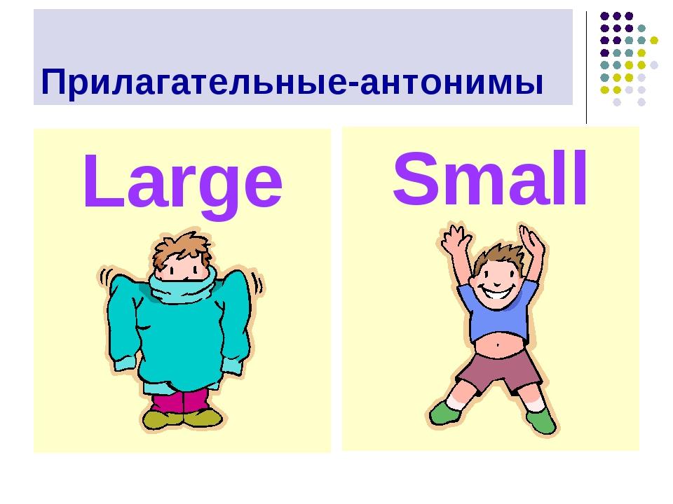 Прилагательные-антонимы Large Small