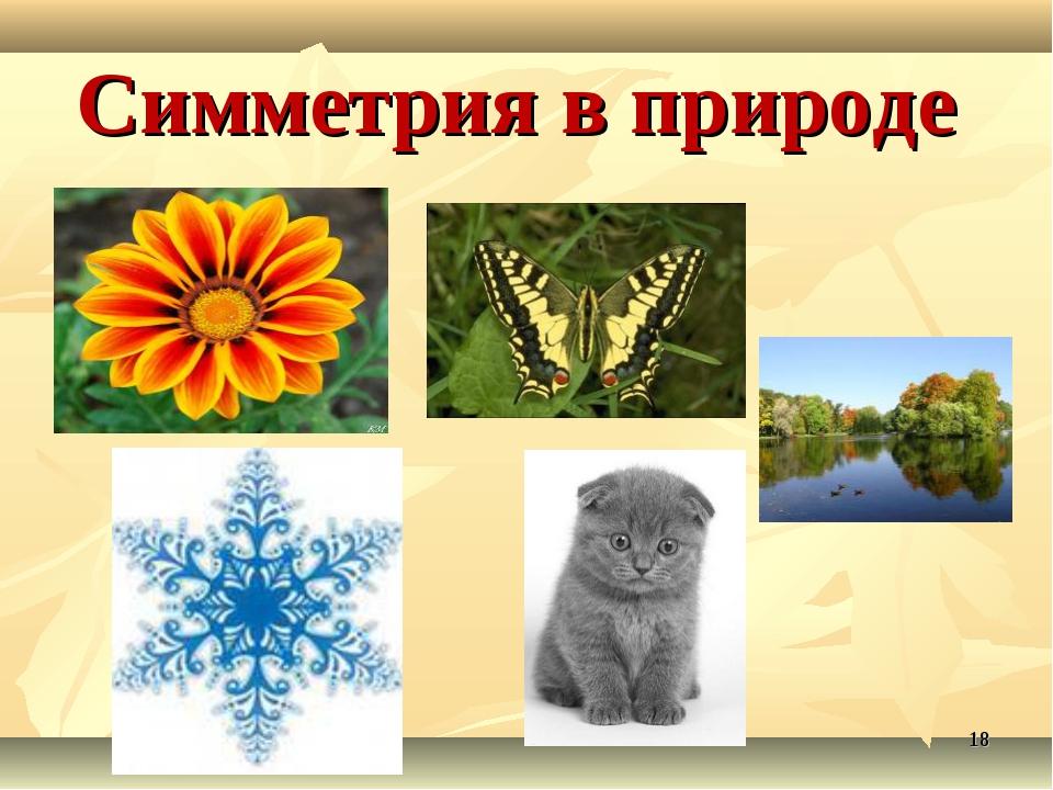 Симметрия в природе *