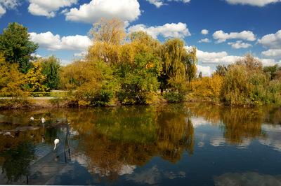 http://img-5.photosight.ru/5b6/4366086_thumb.jpg