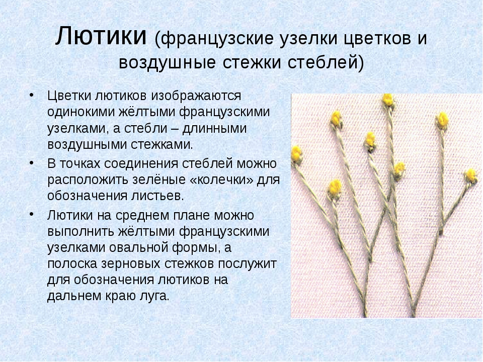 Лютики (французские узелки цветков и воздушные стежки стеблей) Цветки лютиков...