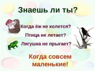 Знаешь ли ты? Когда ёж не колется? Птица не летает? Лягушка не прыгает? Когда