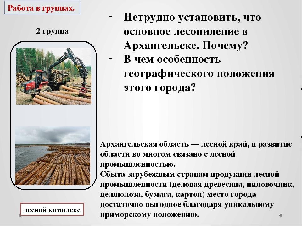 Работа в группах. 2 группа лесной комплекс Нетрудно установить, что основное...