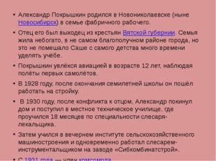 Александр Покрышкин родился в Новониколаевске (нынеНовосибирск) в семье фабр