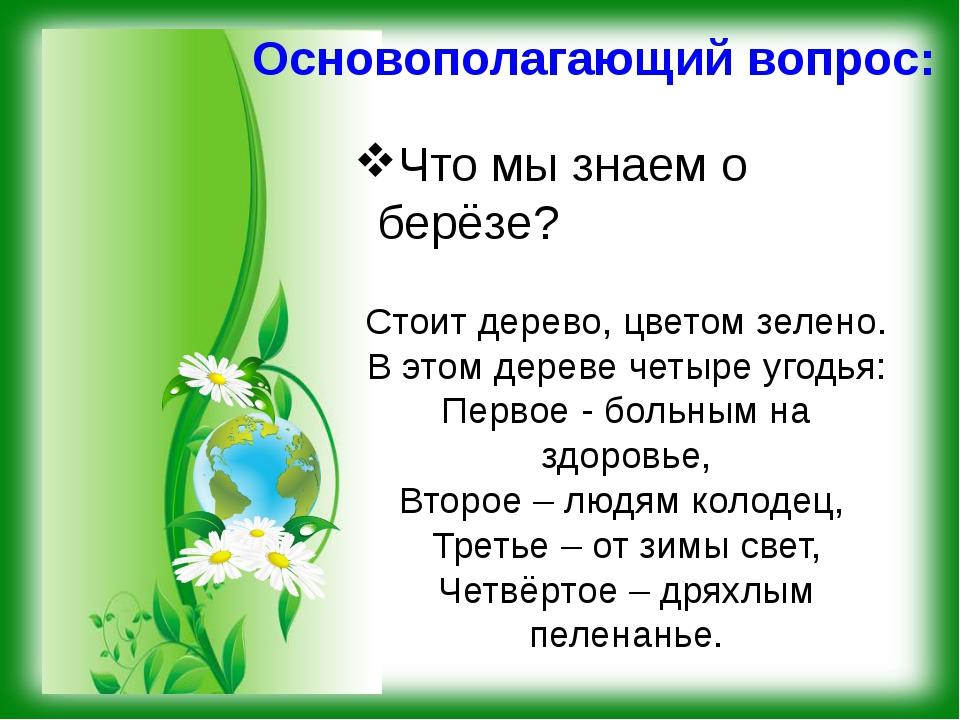 Основополагающий вопрос: Что мы знаем о берёзе? Стоит дерево, цветом зелено....