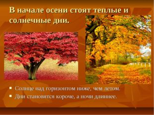 В начале осени стоят теплые и солнечные дни. Солнце над горизонтом ниже, чем