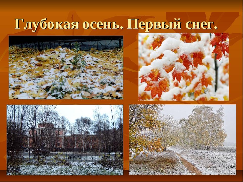 Глубокая осень. Первый снег.