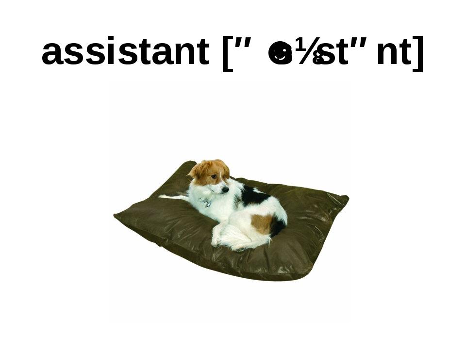 assistant [əˈsɪstənt]