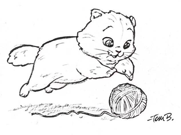 http://img10.deviantart.net/4d74/i/2010/350/1/1/big_fluffy_kitten_by_tombancroft-d34zpyl.jpg