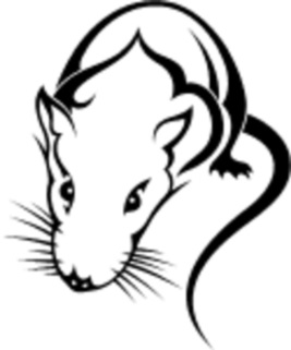 http://tattooinfo.ru/images/foto_cherno_belyj_jeskiz_tatu_mysh.jpg