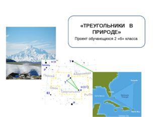 «ТРЕУГОЛЬНИКИ В ПРИРОДЕ» Проект обучающихся 2 «б» класса