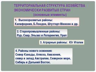 ТЕРРИТОРИАЛЬНАЯ СТРУКТУРА ХОЗЯЙСТВА ЭКОНОМИЧЕСКИ РАЗВИТЫХ СТРАН (основные эле