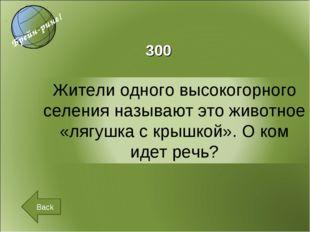 Back 300