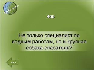 Back 400