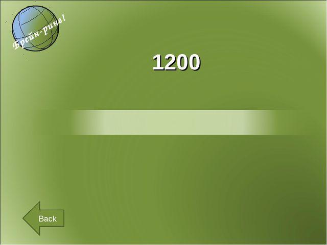 1200 Back