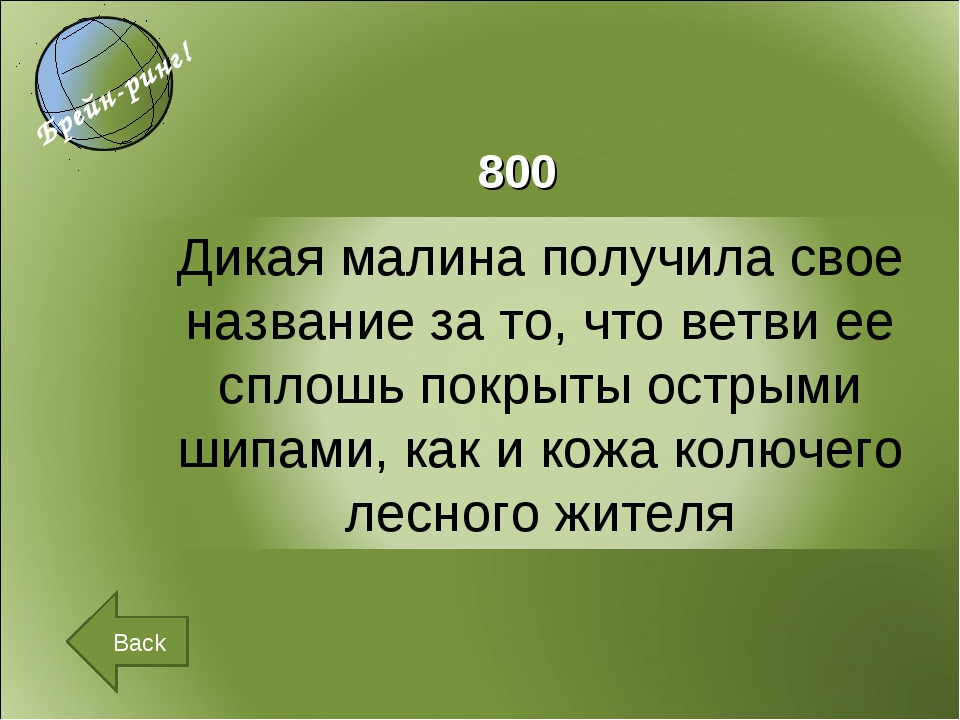 800 Back