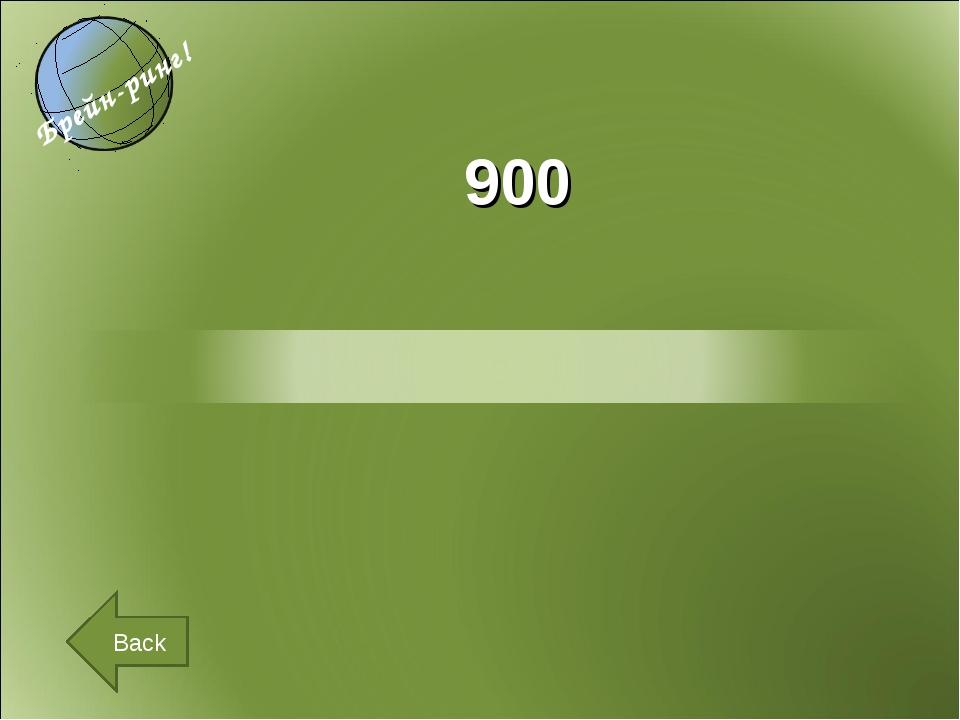900 Back