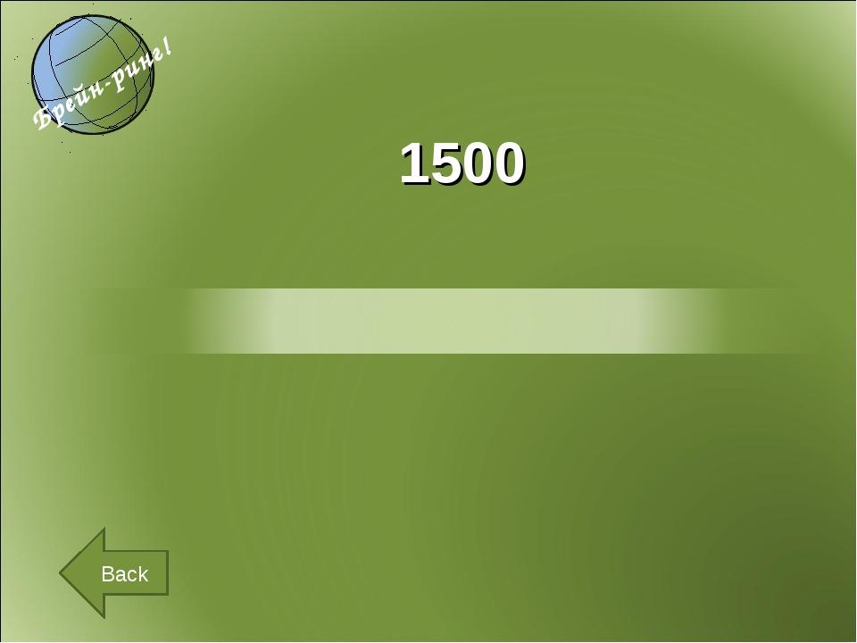 1500 Back
