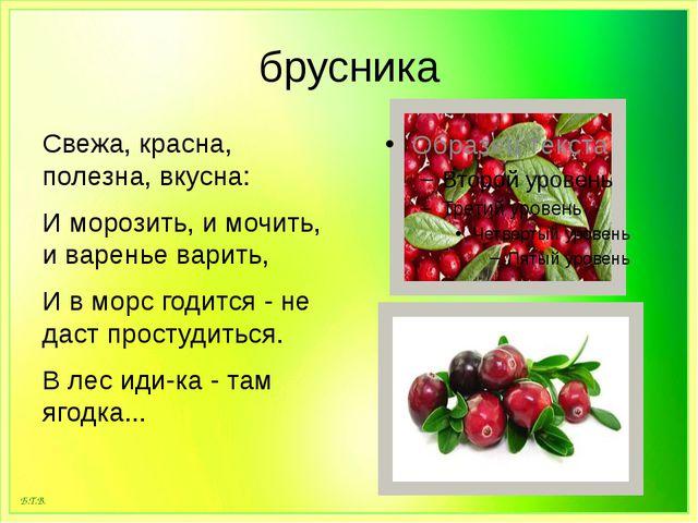 брусника Свежа, красна, полезна, вкусна: И морозить, и мочить, и варенье вари...