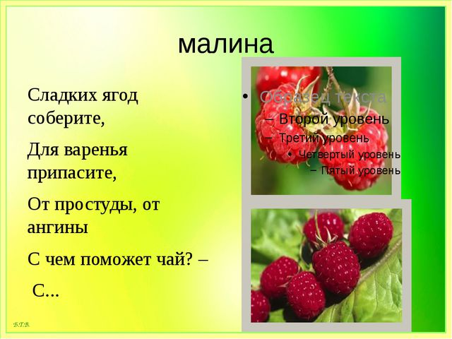 малина Сладких ягод соберите, Для варенья припасите, От простуды, от ангины С...