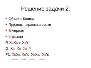 Решение задачи 2: Объект: Кошки Признак: окраска шерсти В-черная b-рыжая