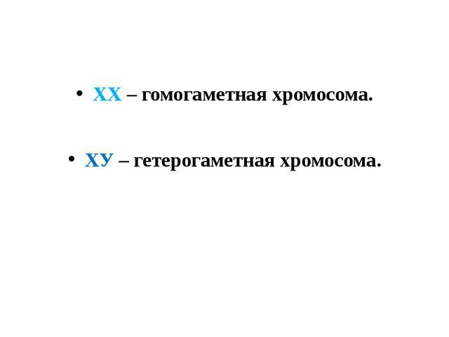 ХХ – гомогаметная хромосома. ХХ – гомогаметная хромосома.             ХУ –...
