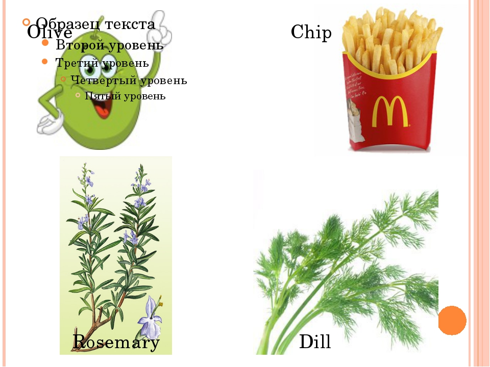 Olive Chip Rosemary Dill