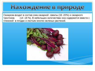 Сахароза входит в состав сока сахарной свеклы (16 -20%) и сахарного тростника