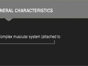 GENERAL CHARACTERISTICS Complex muscular system (attached to ________________