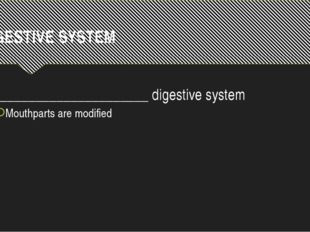 DIGESTIVE SYSTEM ______________________ digestive system Mouthparts are modif