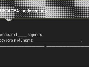 CRUSTACEA: body regions Composed of _____ segments Body consist of 3 tagma: _