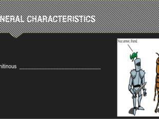 GENERAL CHARACTERISTICS Chitinous _____________________________