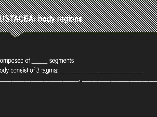 CRUSTACEA: body regions Composed of _____ segments Body consist of 3 tagma: _...