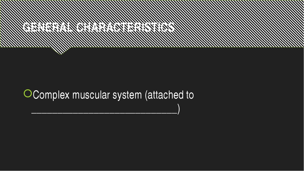 GENERAL CHARACTERISTICS Complex muscular system (attached to ________________...