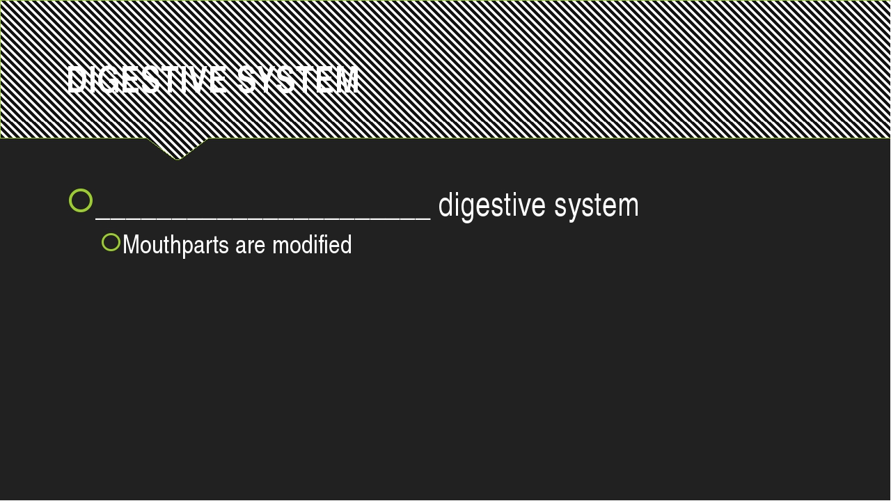 DIGESTIVE SYSTEM ______________________ digestive system Mouthparts are modif...