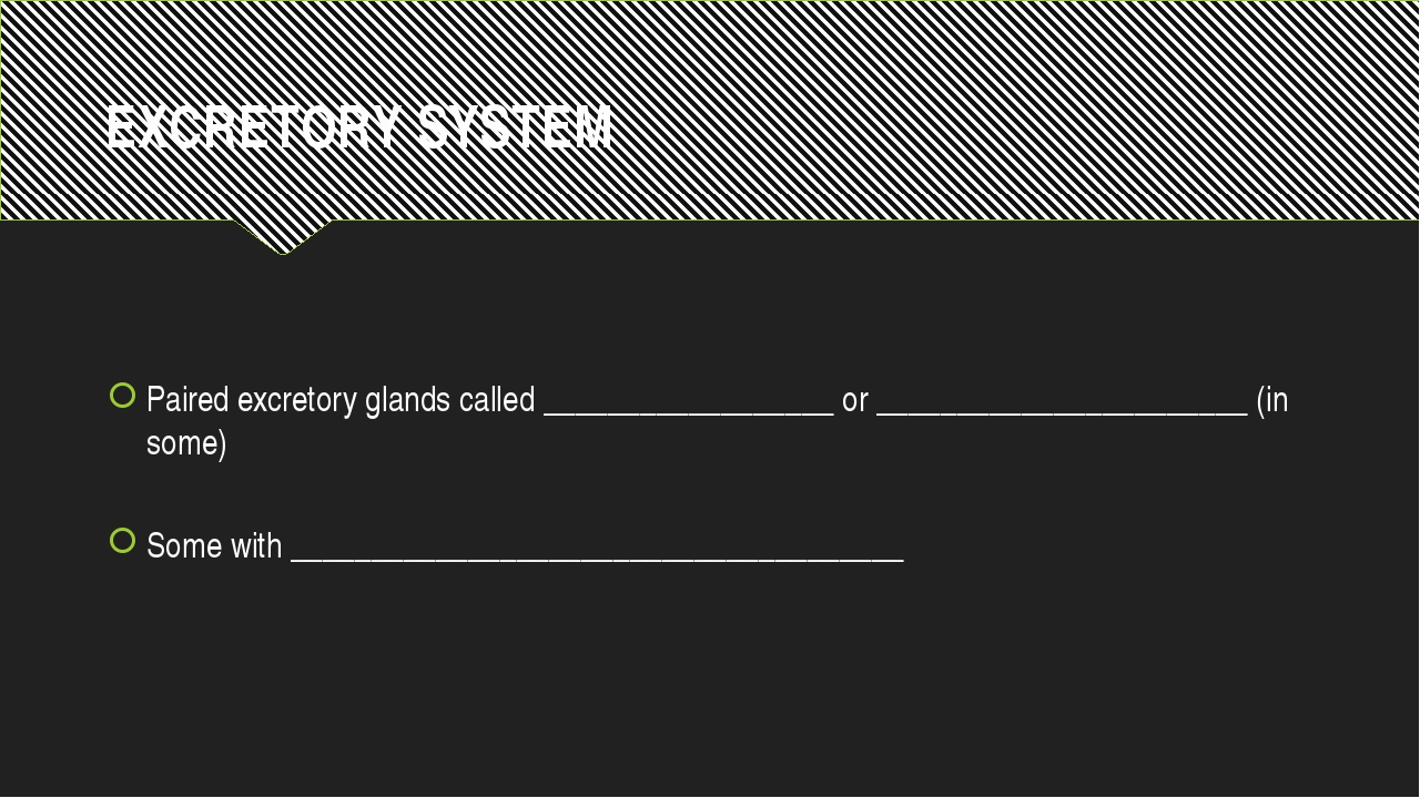 EXCRETORY SYSTEM Paired excretory glands called __________________ or _______...