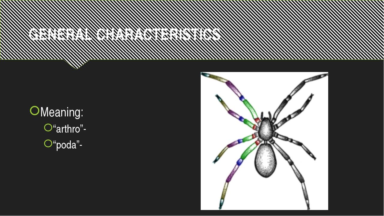 "GENERAL CHARACTERISTICS Meaning: ""arthro""- ""poda""-"