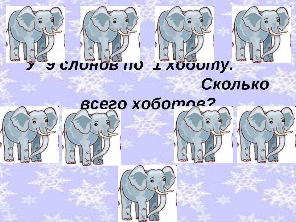 У 9 слонов по 1 хоботу. Сколько всего хоботов?