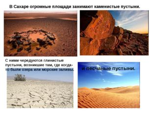 В Сахаре огромные площади занимают каменистые пустыни. С ними чередуются глин