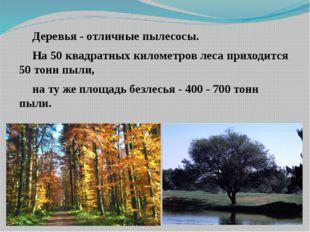 Деревья - отличные пылесосы. На 50 квадратных километров леса приходится 50