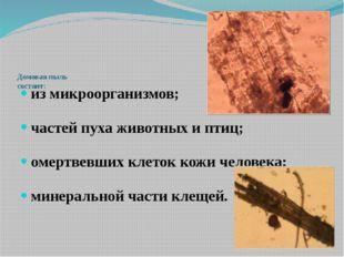 Домовая пыль состоит: из микроорганизмов; частей пуха животных и птиц; омерт