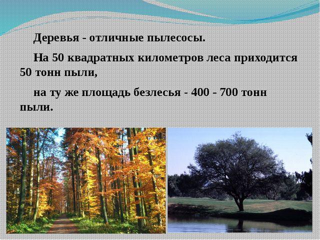 Деревья - отличные пылесосы. На 50 квадратных километров леса приходится 50...