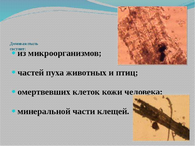 Домовая пыль состоит: из микроорганизмов; частей пуха животных и птиц; омерт...