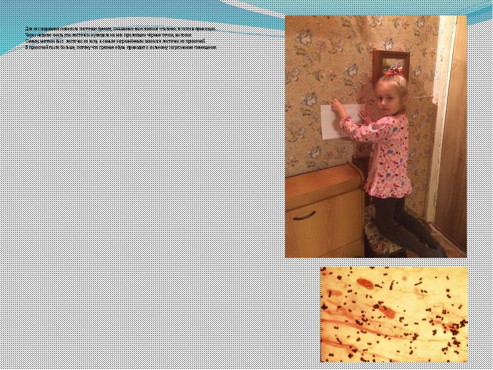 Для исследования повесила листочки бумаги, смазанные вазелином в спальню, в з...