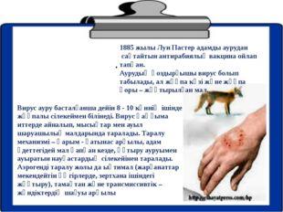 . 1885 жылы Луи Пастер адамды аурудан сақтайтын антирабиялық вакцина ойлап та