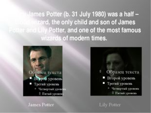 Harry James Potter (b. 31 July 1980) was a half – blood wizard, the only chil