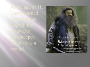 At the age of 11, Harry learned from Rubeus Hagrid, the Hogwarts gamekeeper,